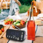 RB110_piknik